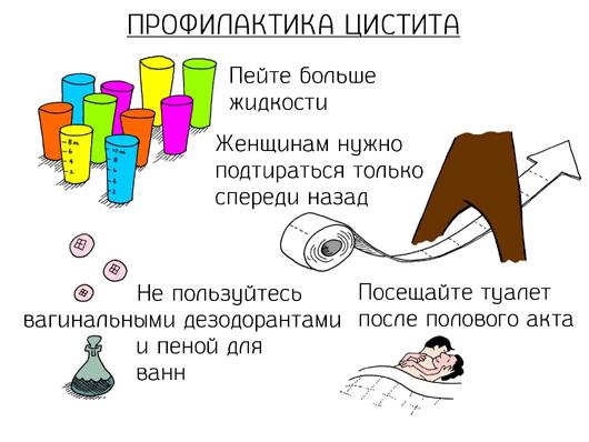 Лечение и профилактика цистита народными средствами в домашних условиях